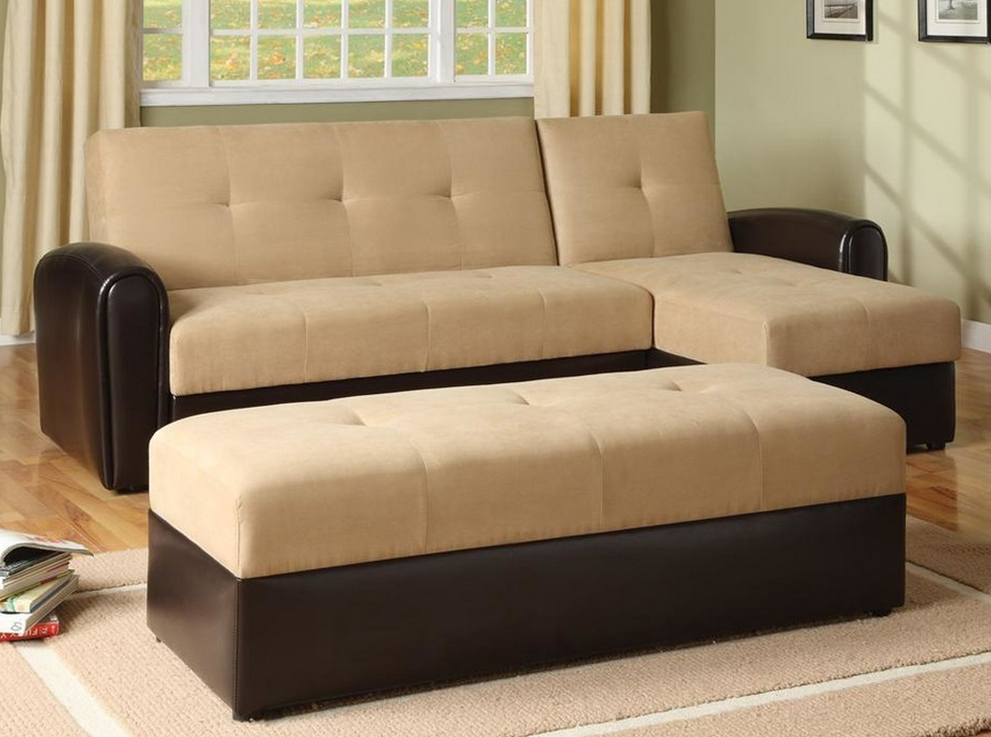 Convertible Sectional Sofa Bed with Stor - contemporary - Sofa Beds - ivgSt